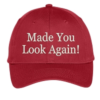Made You Look Again Embroidered Hat